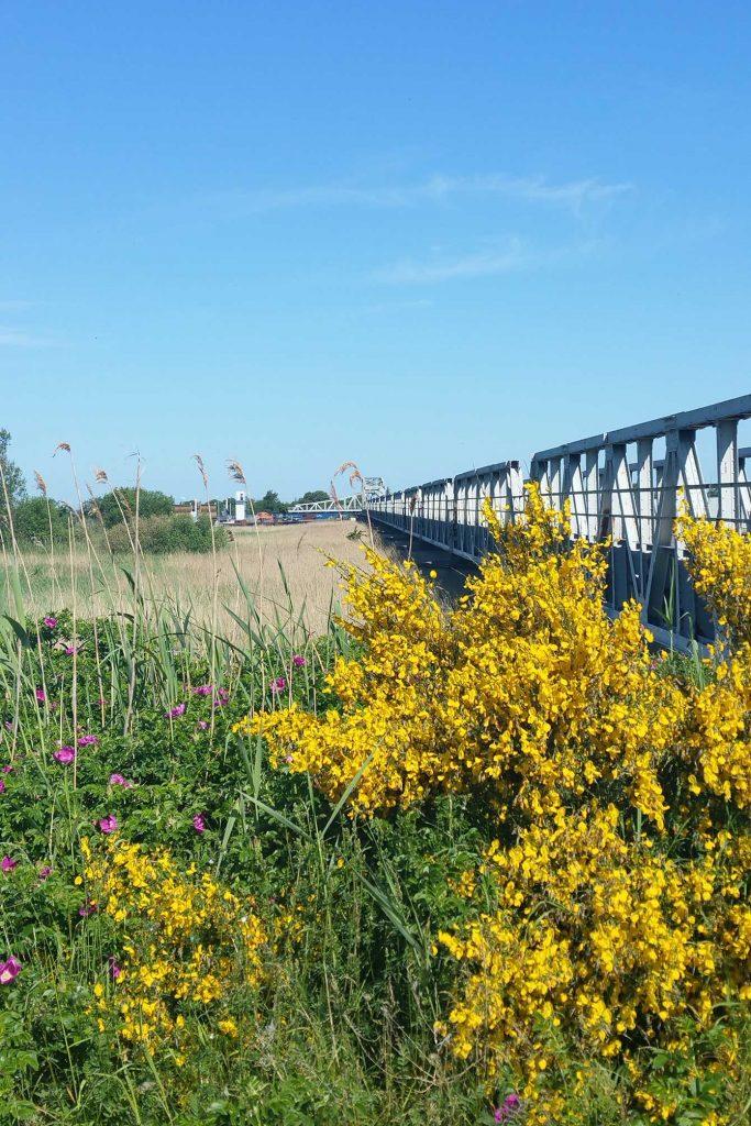 Meiningenbrücke im Frühling